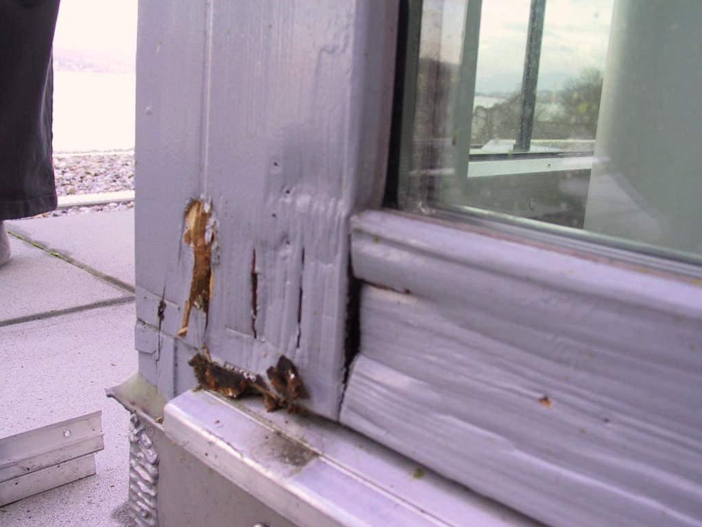 Holzfenster Feuchteschaden Vermorschung