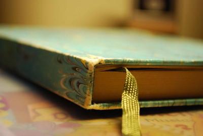 Tagebuch - dem Tag danken