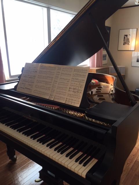 ピアノ演奏もできますよ。
