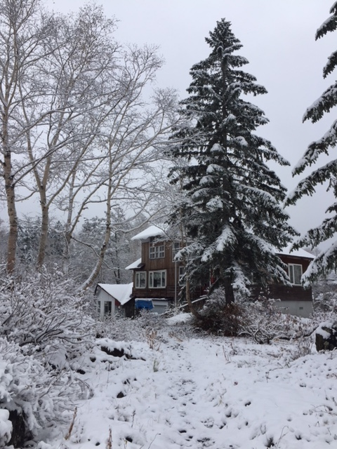 真冬のアートヴィレッジ杜季