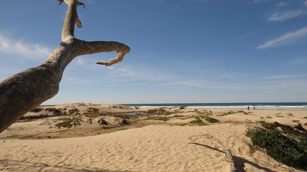 Pismo Beach und Dunes