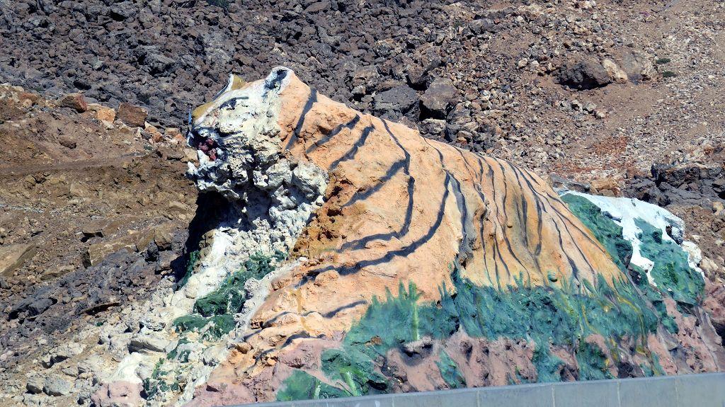 Tiger auf dem Weg nach...