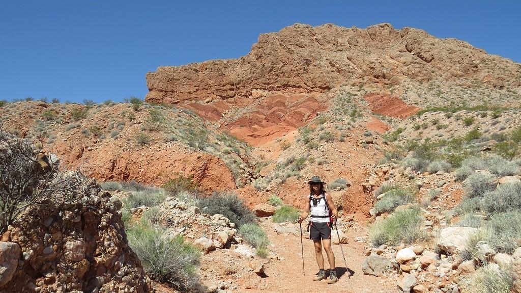 Wandern auf dem Pinnacles Trail