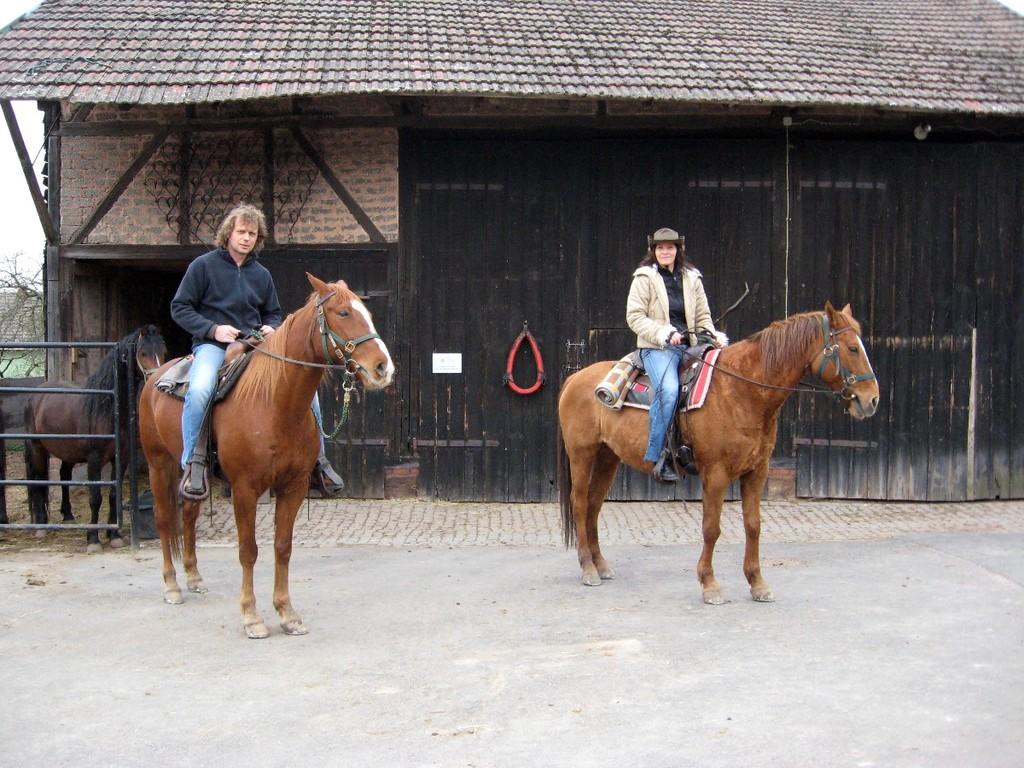 Zurück auf der Ranch