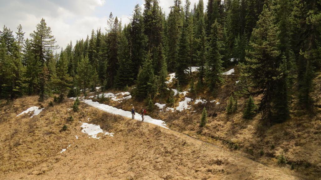 Wir wandern den Moose Lake Loop