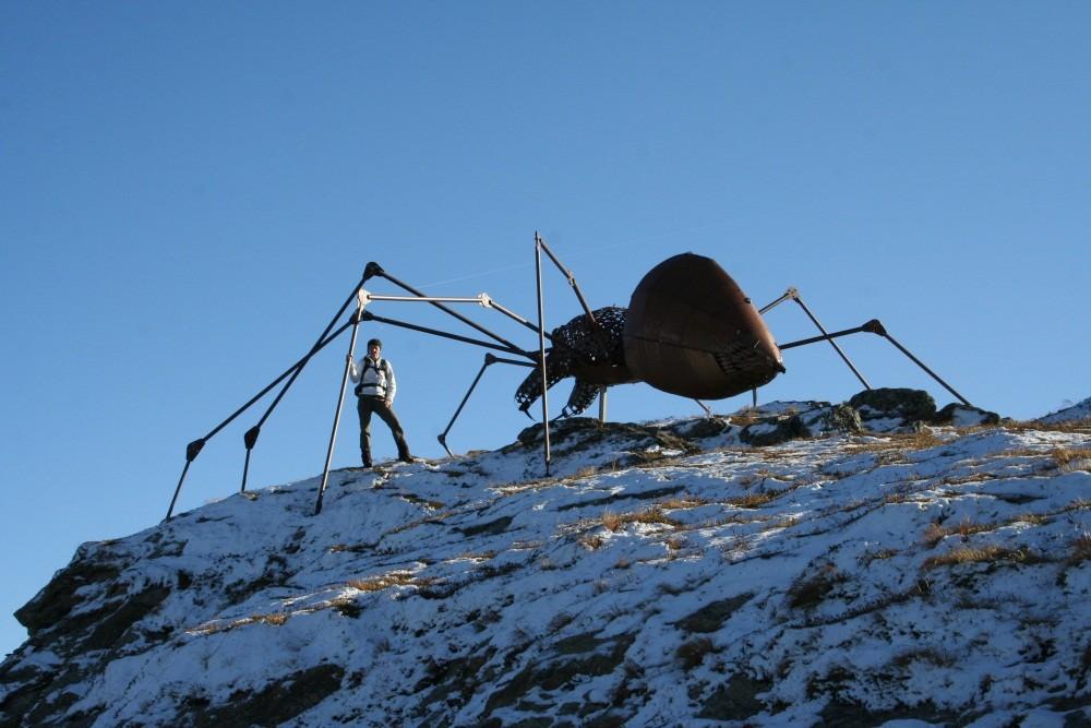 Krabbeltiere bei der Kristallhütte