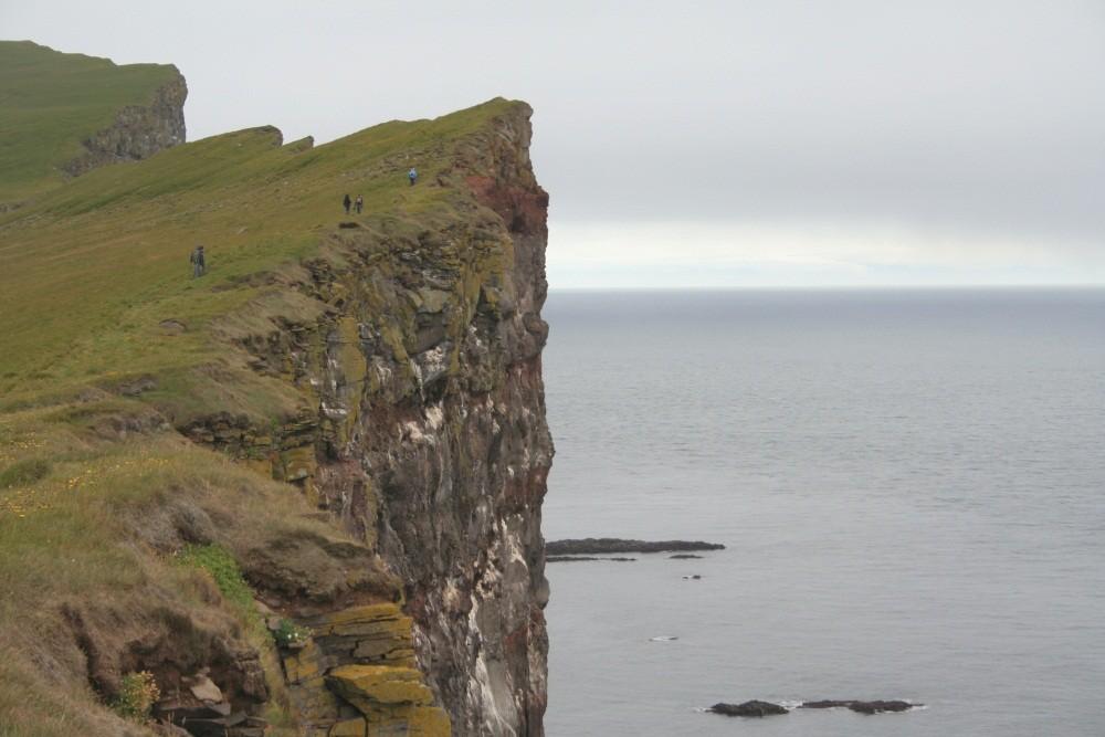 Steilküste Latrabjarg, bis zu 441 m hoch.