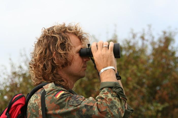 Tierbeobachtung am Geltinger Birk