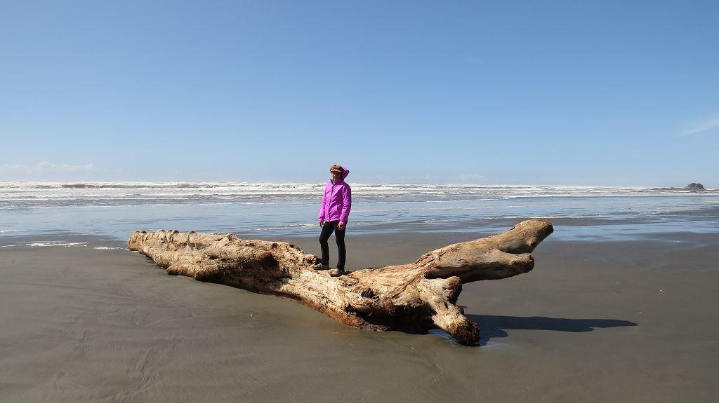 Beach bei Kalaloch