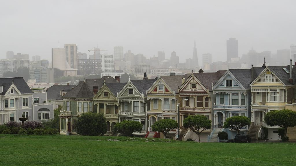 ...mit den Painted Ladies