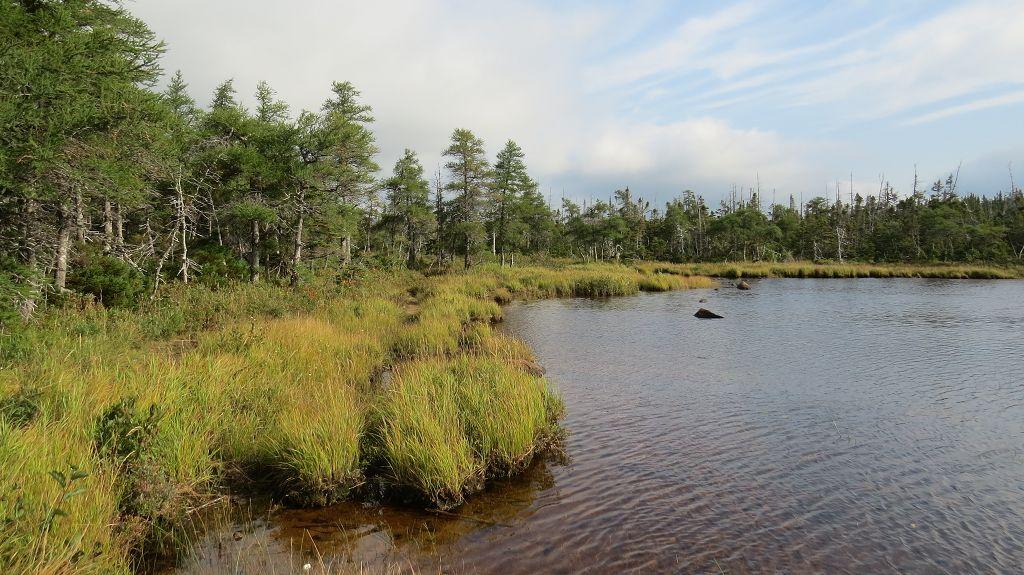 Benjies Lake Trail