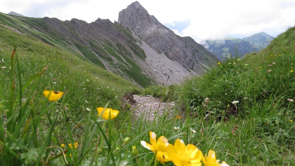 Wir sind heute 1.066 Meter im Anstieg und 1.066 Meter im Abstieg gegangen