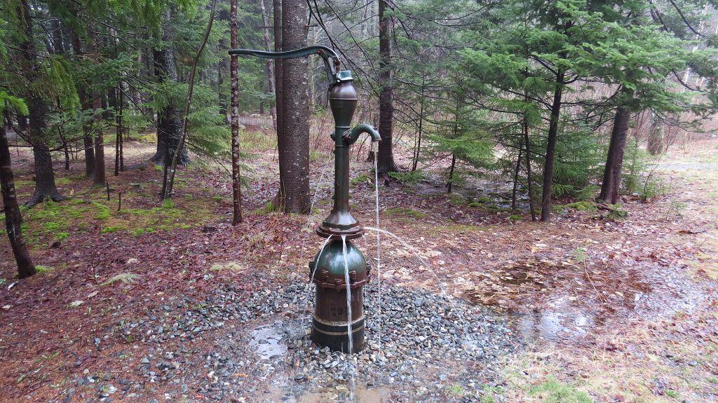 Der Grundwasserspiegel ist ziemlich hoch