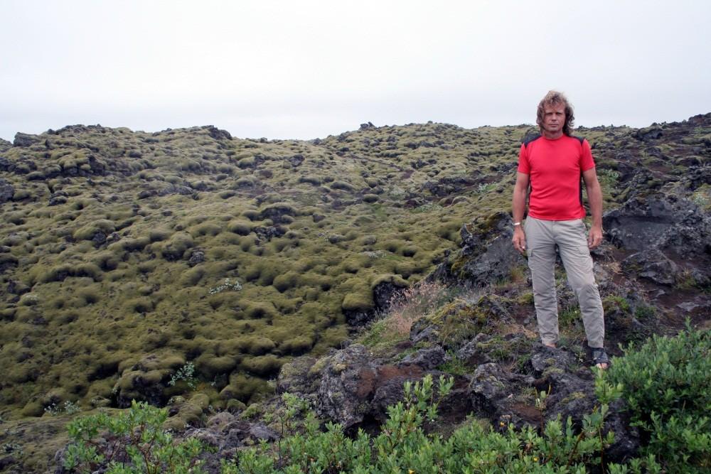 Moosbewachsene Lavafelder ohne Sonne
