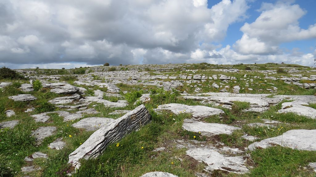 Karstlandschaft im Burren Nationalpark