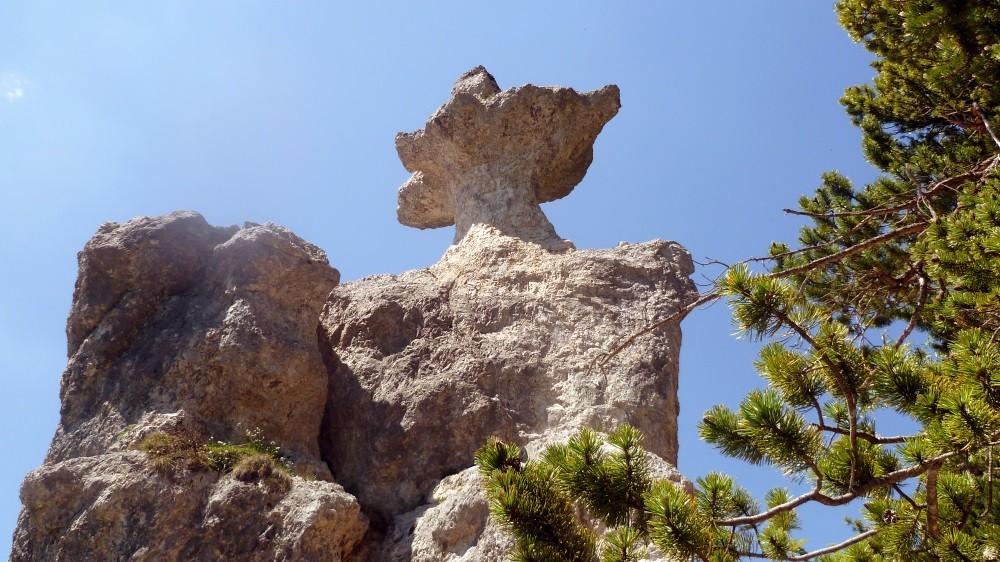 ...zur steinernen Agnes...