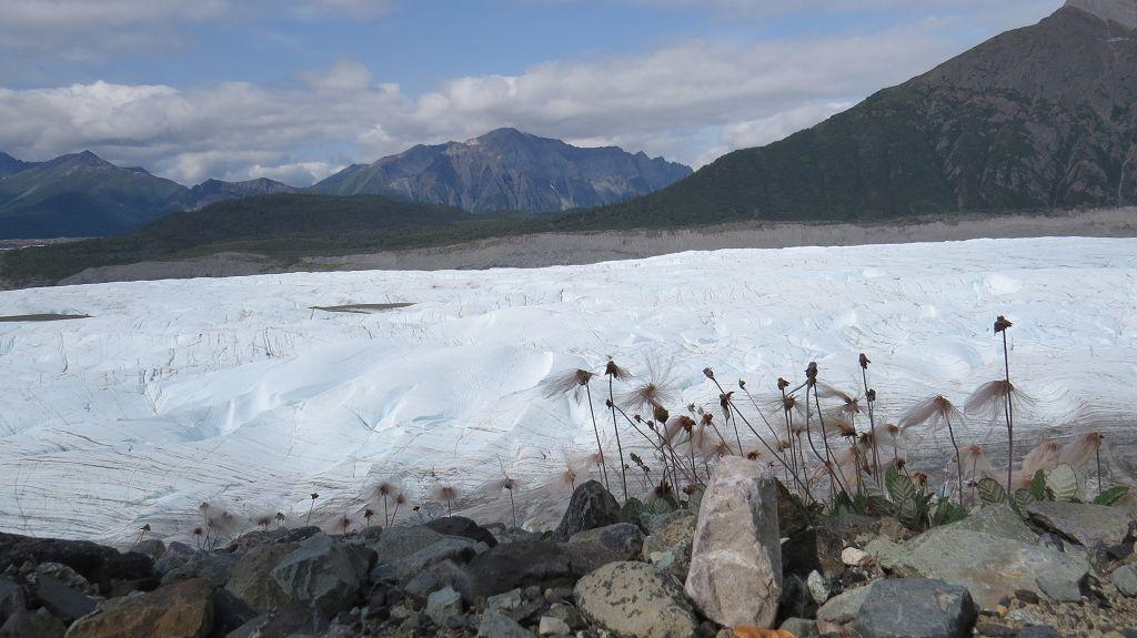 Root-Glacier-Trail