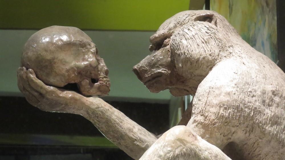 Homo...wer ?  (gesehen in einer Galerie in Dinan)