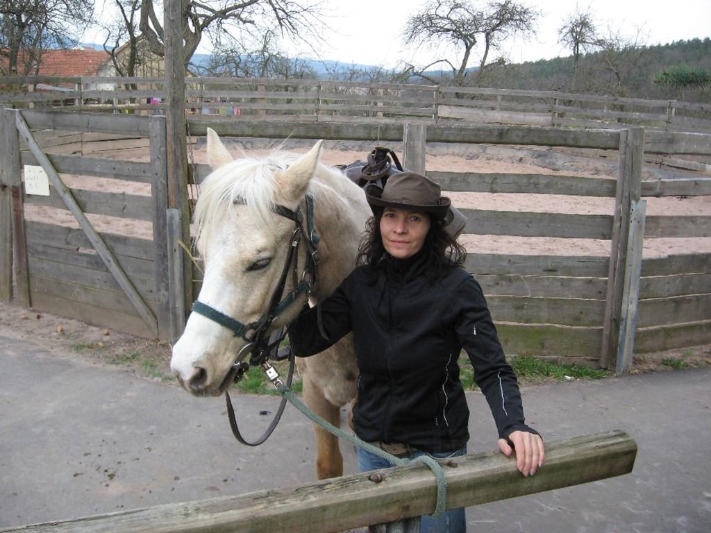 "Erster Tag mit Quarterhorse ""Heidi"""
