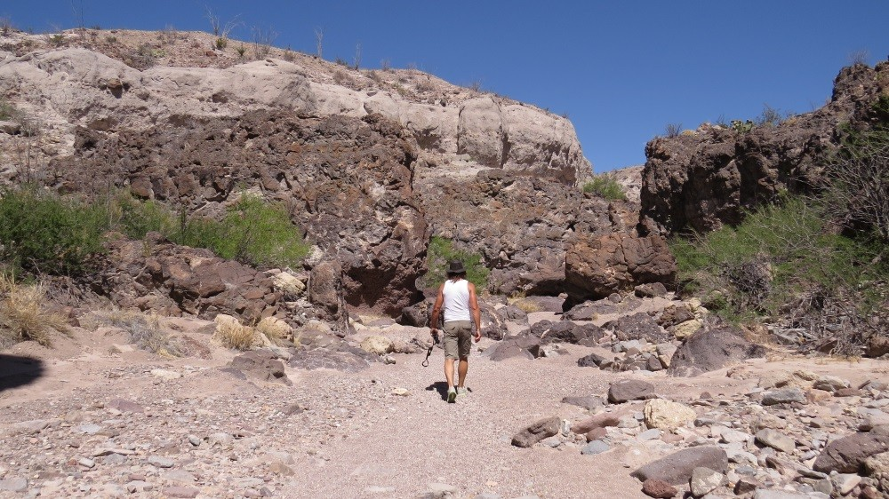 Im Tuff Canyon
