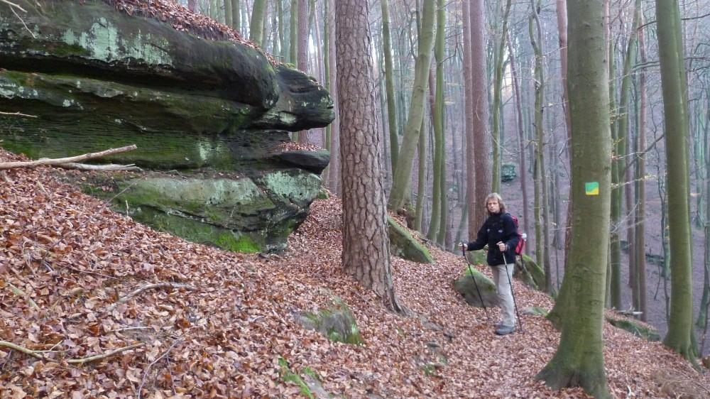 Wir wandern den Rodalber Felsenweg...