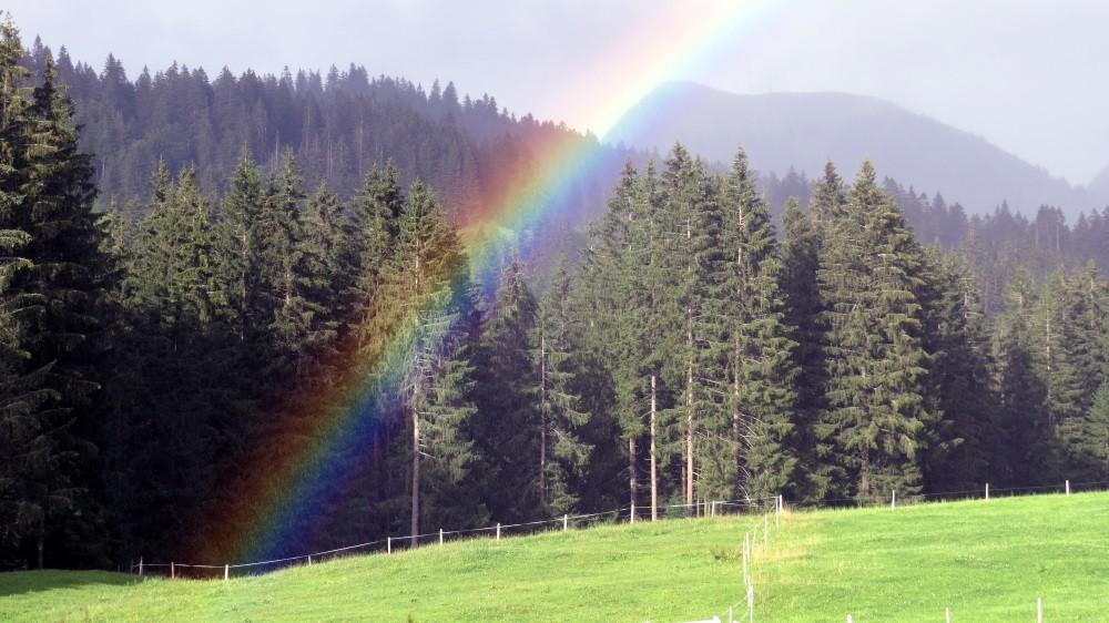 Bei jedem Regenbogen...
