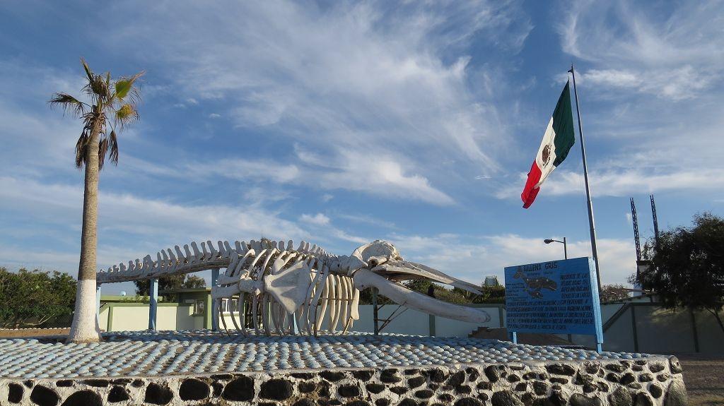 Wir erreichen die Grenze zur Baja California Sur