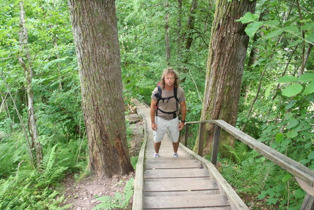 Wir wandern im Gauja-Nationalpark...