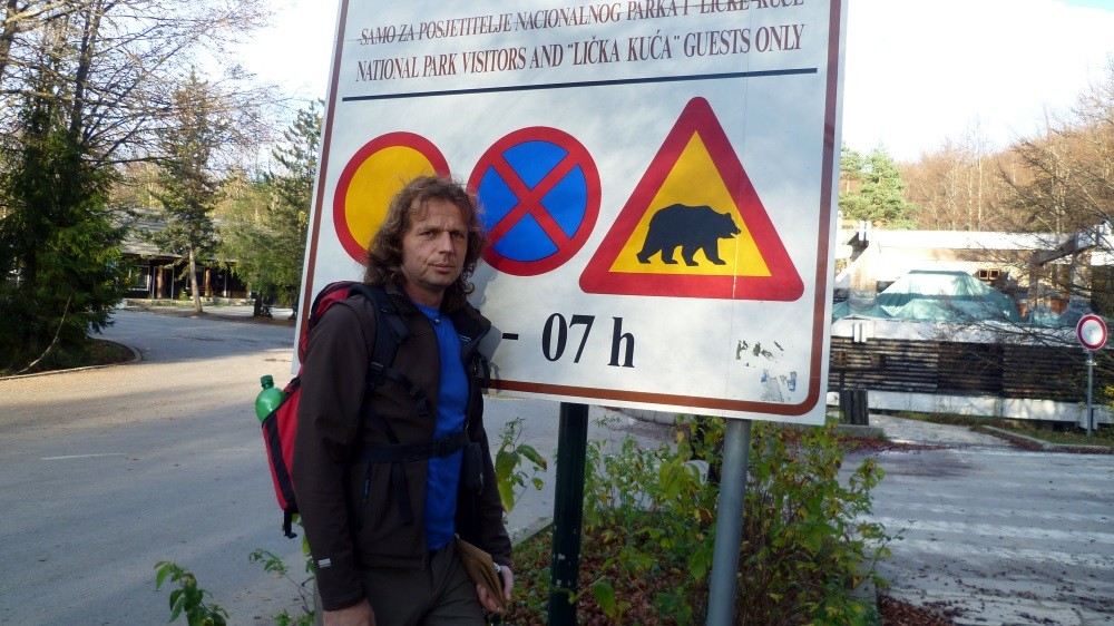 Braunbären im Nationalpark Plitvice