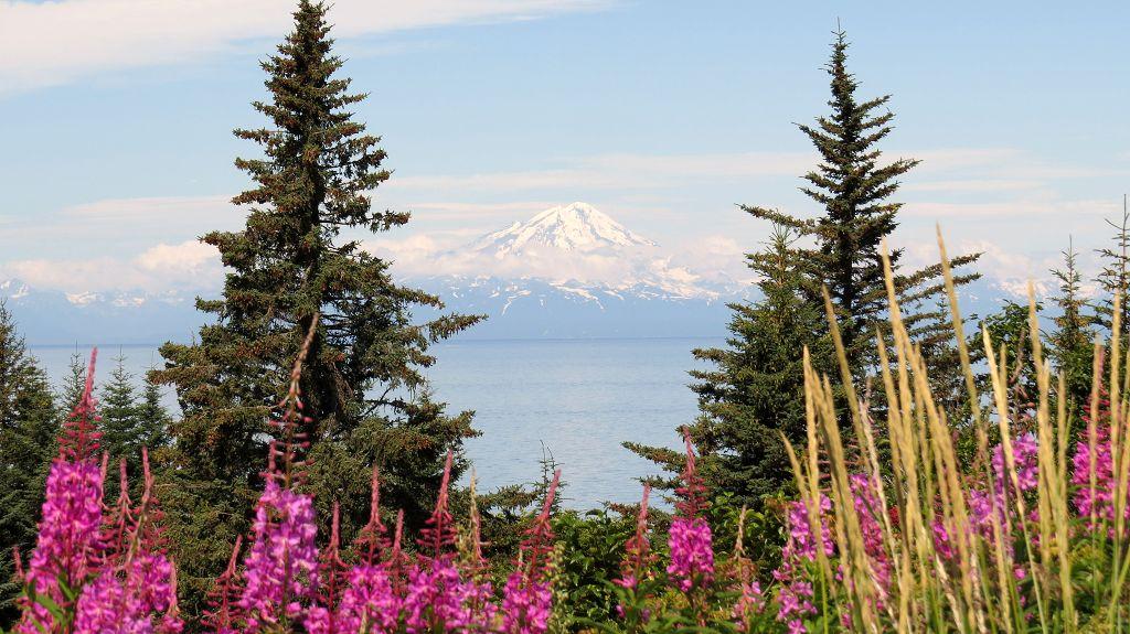 Blick zum Mount Redoubt