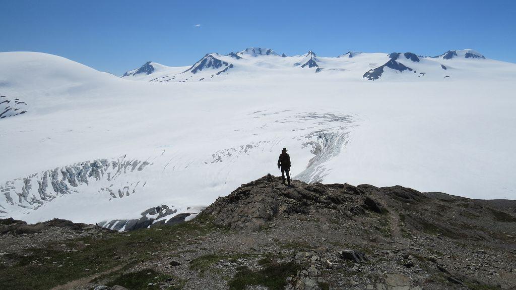 Blick über das Harding-Icefield