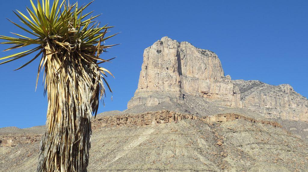 Blick zum El Capitan