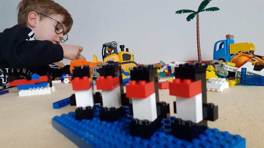 Wenn schon keine echten in Südamerika, dann halt welche aus LEGO