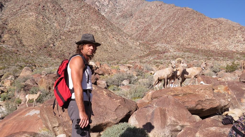 Auf dem Weg zur Palm-Canyon-Oase...