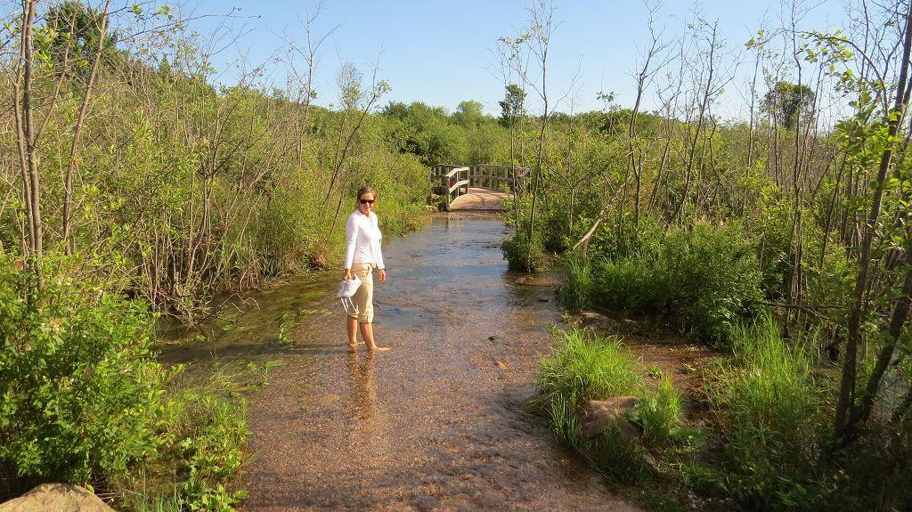 Wanderweg mit Überschwemmung