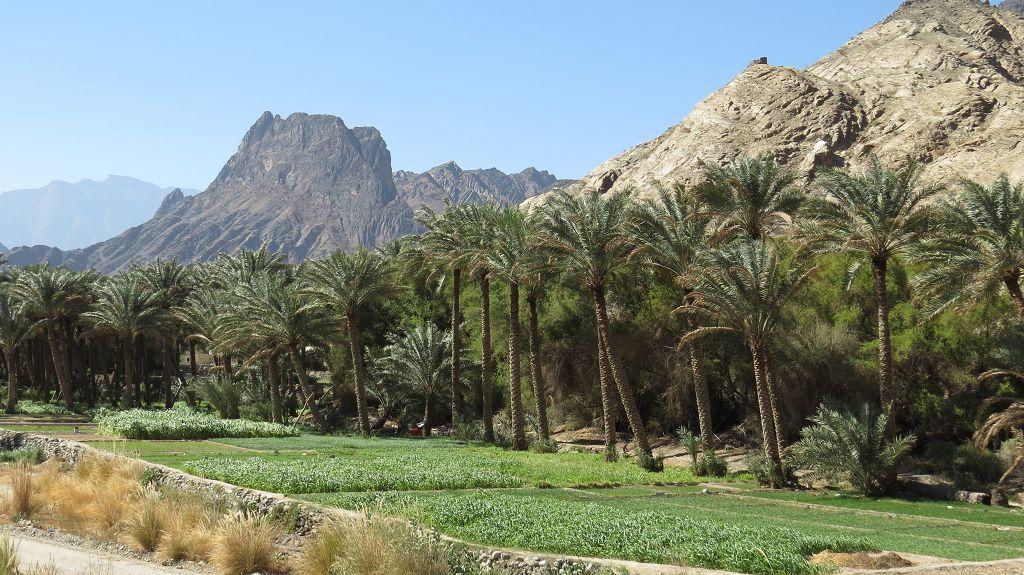 Auf Gebirgspisten vom Wadi Bani Awf ins Wadi Sahtan