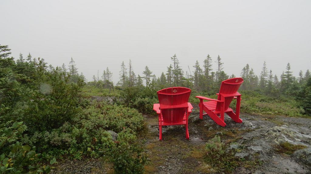 Blick auf den Blue Pond im Terra Nova Nationalpark