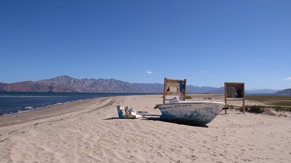 Beach-Camping in Bahia de los Angeles