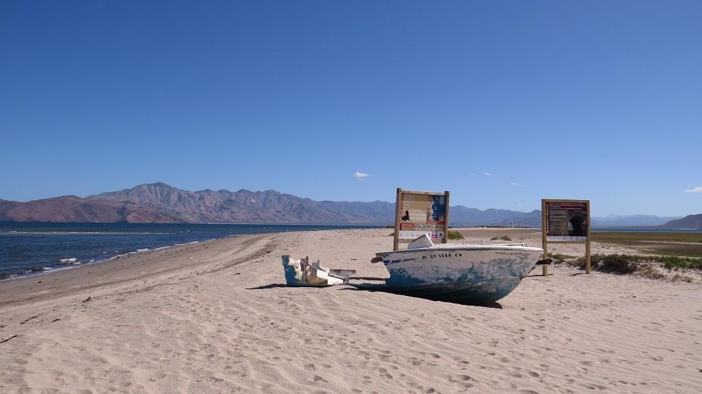 Beach-Camping in Bahia de los Angeles