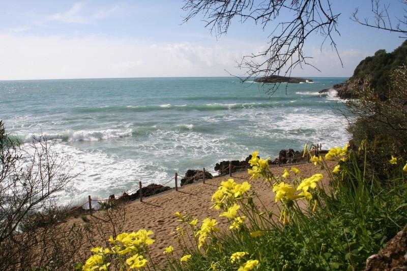 Strand bei Marina di Camerota