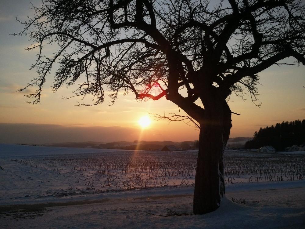 Sonnenuntergang in Amtzell