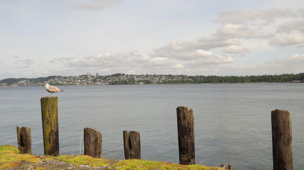 Blick über die Semiahmoo Bay nach Kanada