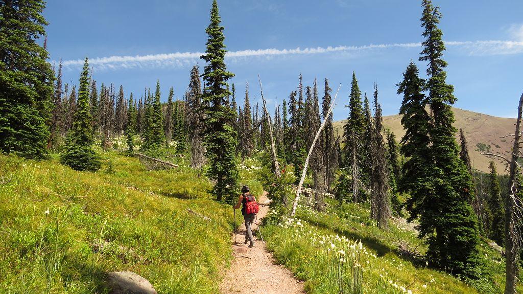 Wanderung zum Carthew-Summit