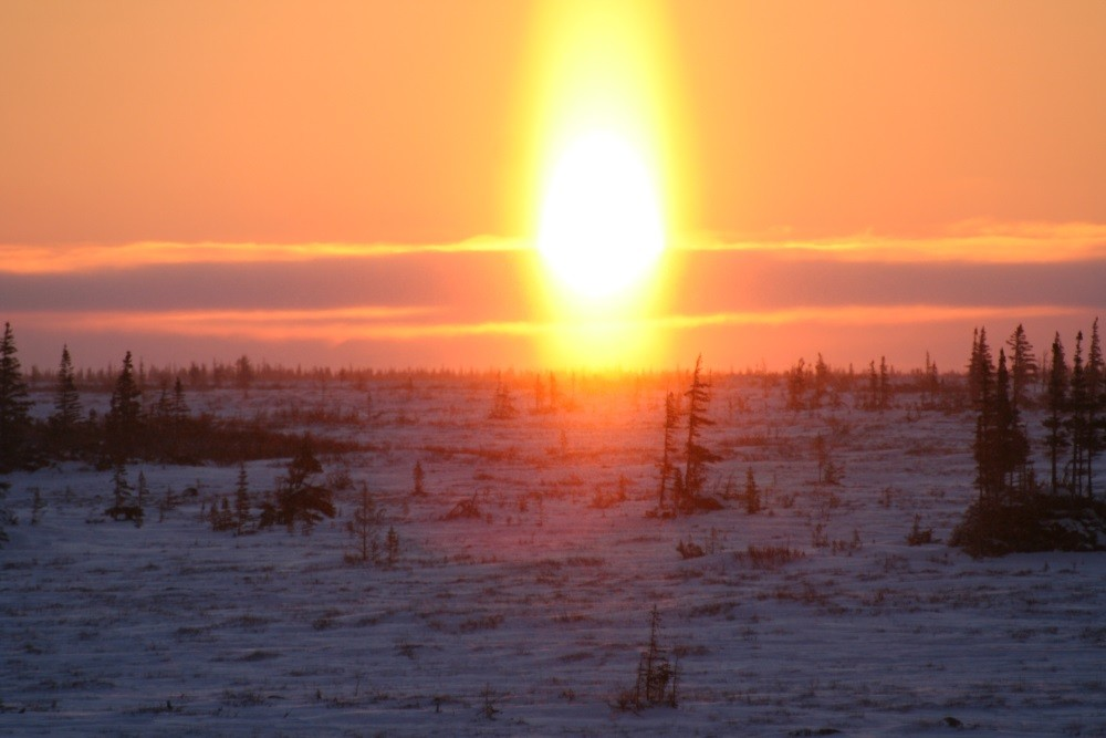 Sonnenaufgang über der Tundra