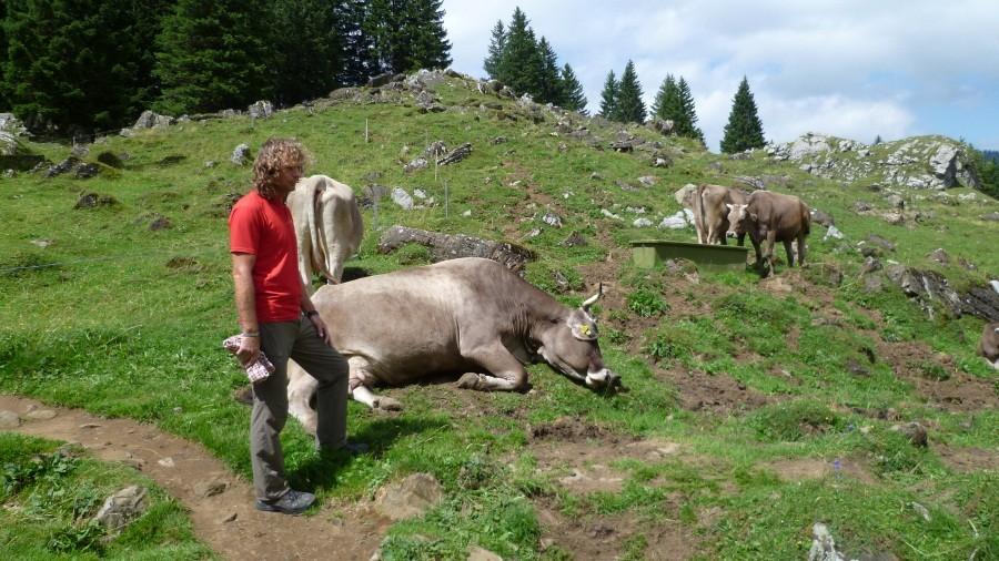 Wanderung zur Alp...