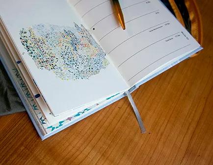 Illustration: Julia Buschbeck, Layout und Bildbearbeitung: Jolanda Suter