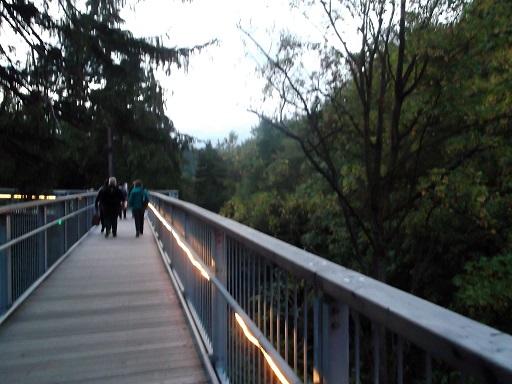 """...und hier ein abendlicher Spaziergang auf dem """"Baumwipfelpfad"""" in Bad Harzburg, ein Tourismusmagnet!"""