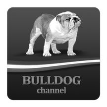 Bulldog Channel