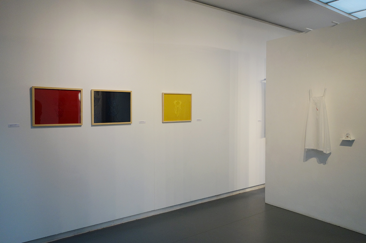 Vue expo Lasécu, 2017.