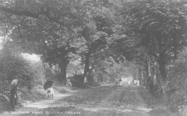 Dolphin Lane (Green Lane) c. 1905
